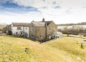 Thumbnail 5 bed farmhouse for sale in West Steel, Whitfield, Hexham, Northumberland