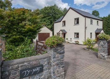 Thumbnail 4 bed detached house for sale in Chain Bridge, Abergavenny