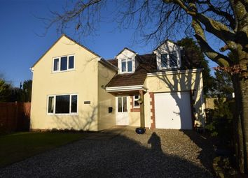 Thumbnail 3 bed detached house for sale in Rye Park, Beaford, Winkleigh