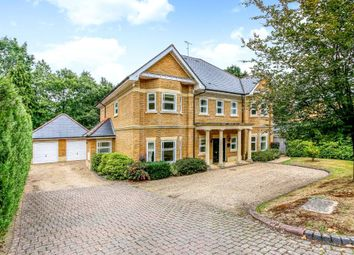 Thumbnail 5 bed detached house to rent in Alpine Close, Hancocks Mount, Ascot, Berkshire