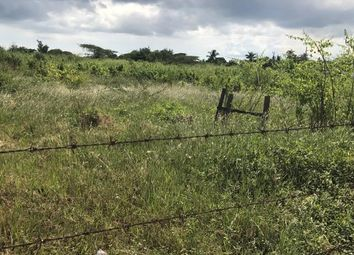 Thumbnail Land for sale in Old Harbour, Saint Catherine, Jamaica