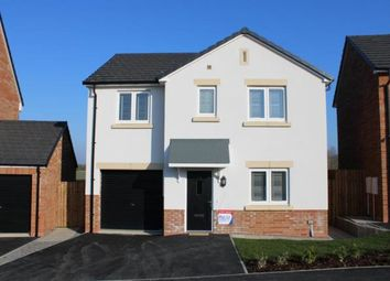 Thumbnail 4 bed detached house for sale in The Limes, Coxhoe, Durham