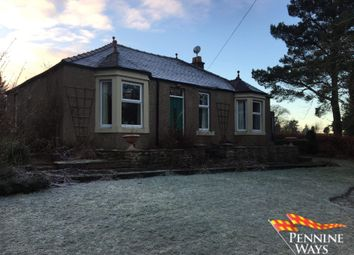 Thumbnail Bungalow to rent in Raylton House, Greenhead, Cumbria