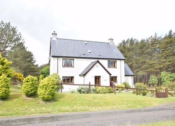 Thumbnail 4 bedroom detached house for sale in Ferry Road, Golspie