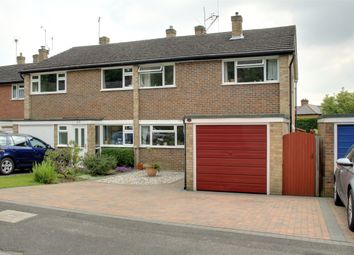 Thumbnail 4 bed semi-detached house to rent in Crofton Close, Ottershaw, Surrey