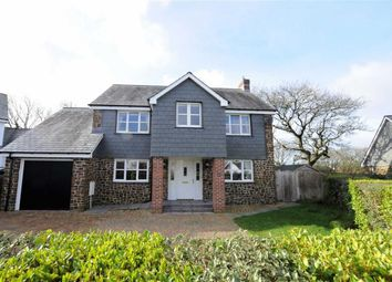 Thumbnail 4 bed detached house for sale in Ashbury Grove, Week St Mary, Holsworthy, Devon