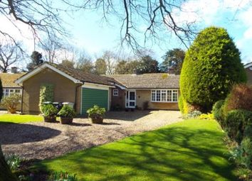 Thumbnail 3 bed bungalow for sale in Mill Lane, Cottesmore, Oakham, Rutland