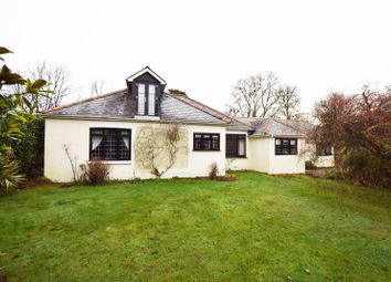 Roe Downs Road, Medstead, Alton, Hampshire GU34. 4 bed detached bungalow for sale