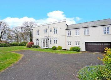 Thumbnail 4 bedroom semi-detached house for sale in Seaton, Devon