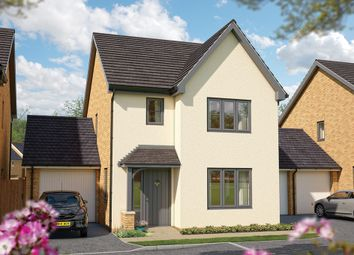 "Thumbnail 3 bed detached house for sale in ""The Cypress"" at Binhamy Road, Stratton, Bude"