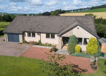 Thumbnail 4 bed detached bungalow for sale in Biggar