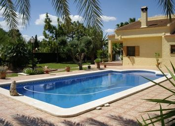 Thumbnail 4 bed villa for sale in 03340 Albatera, Alicante, Spain