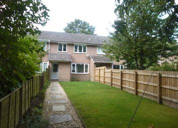 Thumbnail Property to rent in Woodsford Lane, Moreton, Dorchester