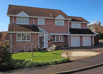 Thumbnail 4 bed detached house for sale in Warwick Place, West Wellow, Romsey