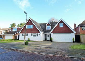 Thumbnail 5 bedroom detached house for sale in Lexden Grove, Colchester, Essex
