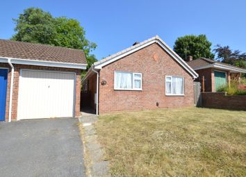Thumbnail 3 bed detached bungalow to rent in Rowan Close, Ogwell, Newton Abbot, Devon