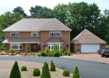 Thumbnail 5 bedroom detached house for sale in Pant Y Deri, Pontlliw, Swansea