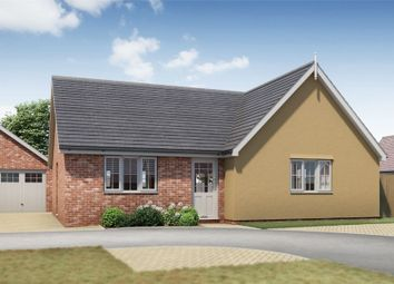 Thumbnail 3 bed detached bungalow for sale in Plot 18 Springfield Meadows, Little Clacton, Essex
