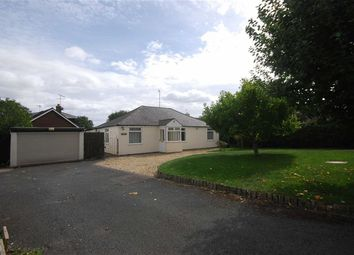 Thumbnail 3 bedroom detached bungalow to rent in Ryall Grove, Upton Upon Severn, Worcestershire