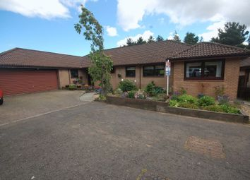 Thumbnail 5 bed bungalow for sale in Beechwood Park, Livingston
