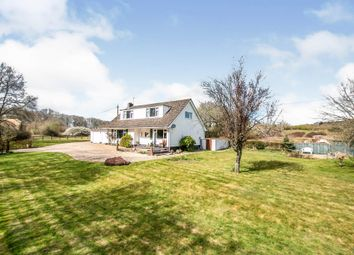 Horton Heath, Horton, Wimborne BH21. 4 bed bungalow for sale