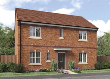 "Thumbnail 4 bedroom detached house for sale in ""Stevenson B"" at Sophia Drive, Great Sankey, Warrington"