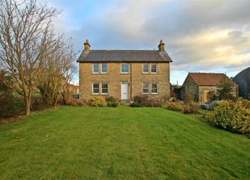 Thumbnail 4 bedroom detached house to rent in Wilton, Pickering