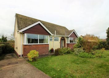 Thumbnail 4 bed detached bungalow for sale in Court Road, Torquay