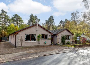 Thumbnail 6 bed bungalow for sale in Station Road, Carrbridge, Inverness-Shire