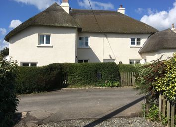 Thumbnail 3 bed cottage for sale in Burrington, Umberleigh