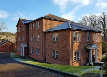 Thumbnail 2 bed flat to rent in Burnside Gate, Hamilton