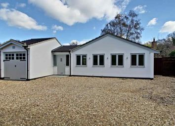 Thumbnail 3 bedroom detached bungalow for sale in Lampards Close, Wedmans Lane, Rotherwick, Hook
