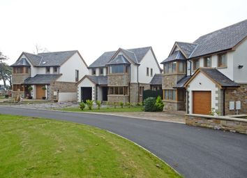 Thumbnail 4 bedroom detached house for sale in Moor Park, Crosby, Maryport, Cumbria