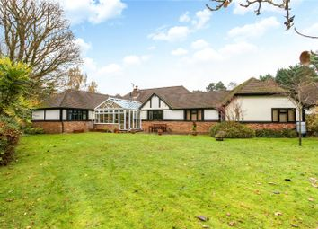 Thumbnail 4 bed detached bungalow for sale in Hurtmore Chase, Hurtmore, Godalming, Surrey