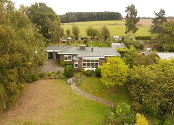 Thumbnail 4 bed detached bungalow for sale in Pinmill Road, Pinmill, Ipswich, Suffolk
