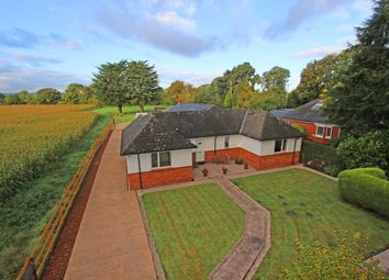 4 bed detached bungalow for sale in The Copse, Horn Road, Kentisbeare EX15