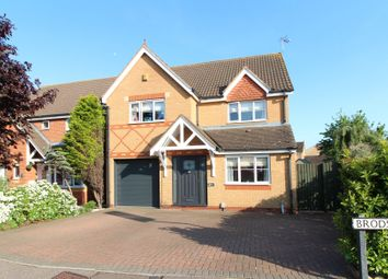 Thumbnail 4 bedroom detached house for sale in Brodsworth Road, Peterborough