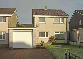 Thumbnail 3 bed detached house for sale in Cameron Court, Heathhall, Dumfries