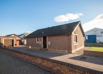 Thumbnail 3 bed detached bungalow to rent in Esk Court, Forfar
