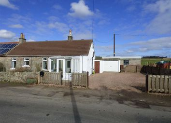 Thumbnail 4 bed semi-detached house for sale in Anstruther