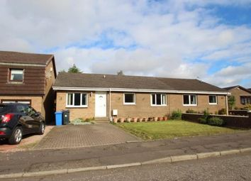 Thumbnail 4 bed bungalow for sale in Grange Place, Redding, Falkirk
