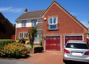 Thumbnail 4 bed detached house to rent in Hickory Gardens, Southampton