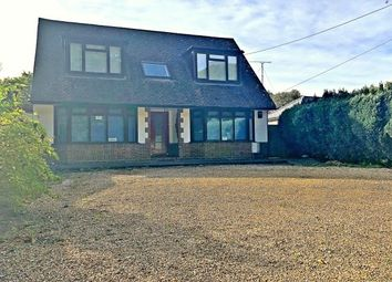 Thumbnail 4 bed property to rent in Long Lane, Holbury, Southampton