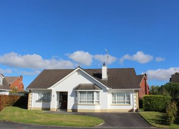 Thumbnail 3 bed bungalow for sale in Rathgannon, Warrenpoint