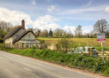 Thumbnail 3 bed detached house for sale in Jacobstowe, Okehampton