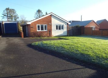 Thumbnail 3 bed bungalow to rent in Lenchwick, Evesham