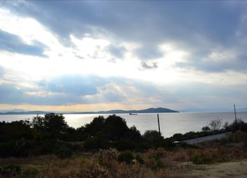 Thumbnail Land for sale in Agion Oros, Kilkis, Gr