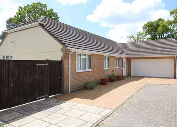 Thumbnail 3 bed bungalow for sale in Badgers Copse, New Milton