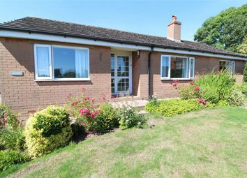 Thumbnail 3 bed detached bungalow for sale in Aumic, Langwathby, Penrith, Cumbria