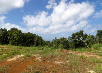 Thumbnail Land for sale in Blowers Plantation, Plum Tree Hill, St. Thomas, Barbados